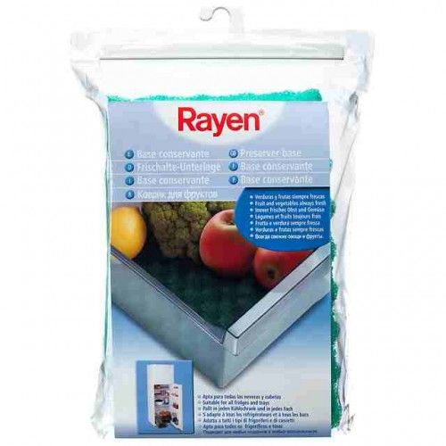 BASE CONSERVANTE NEVERA - RAYEN - 6313