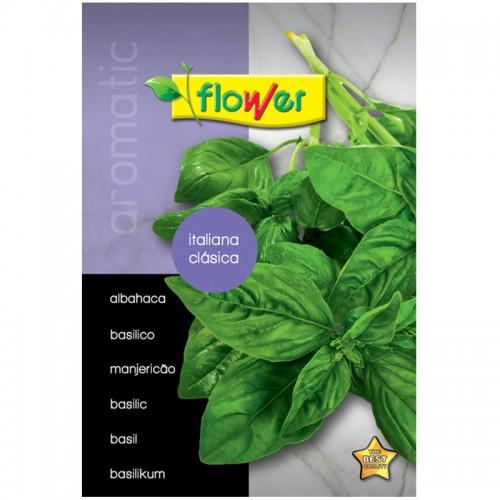 Semilla aromática - Flower